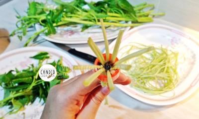"""""""มีดซอยผักบุ้ง (Vegetable Separable Knife)"""""""